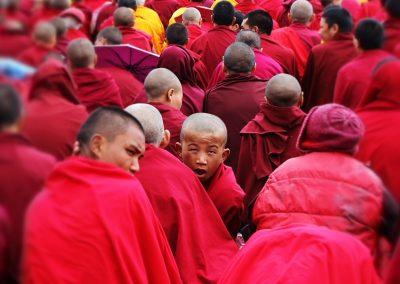 Tibetan (Modern Colloquial)
