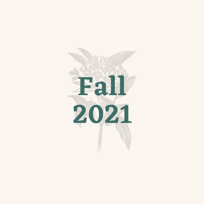 Fall 2021 Projects